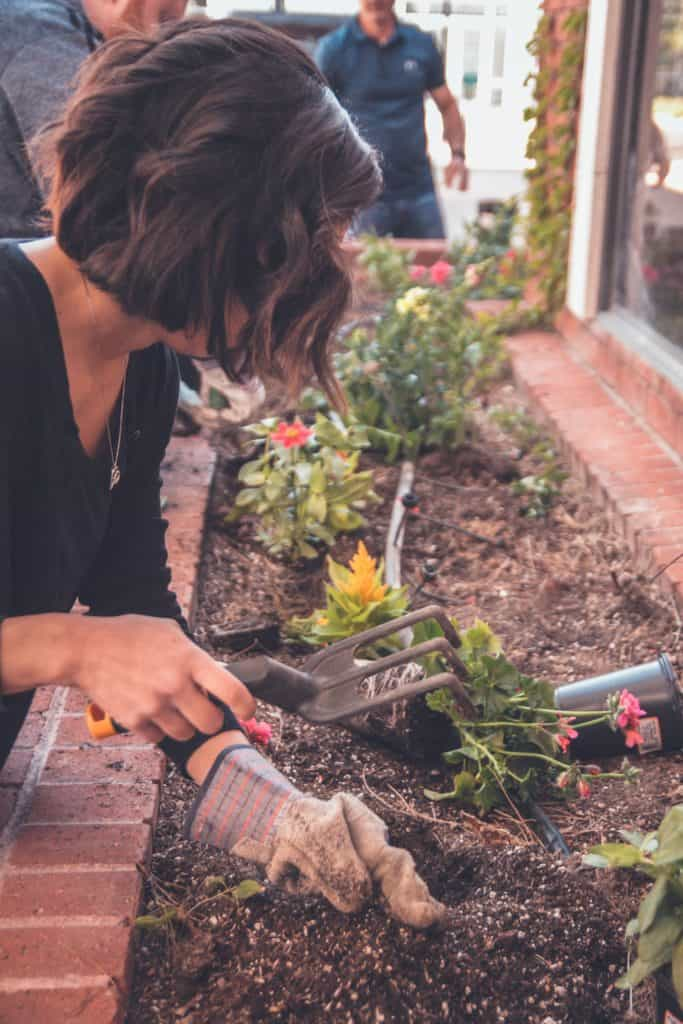 Do You Know Why People Love Gardening?
