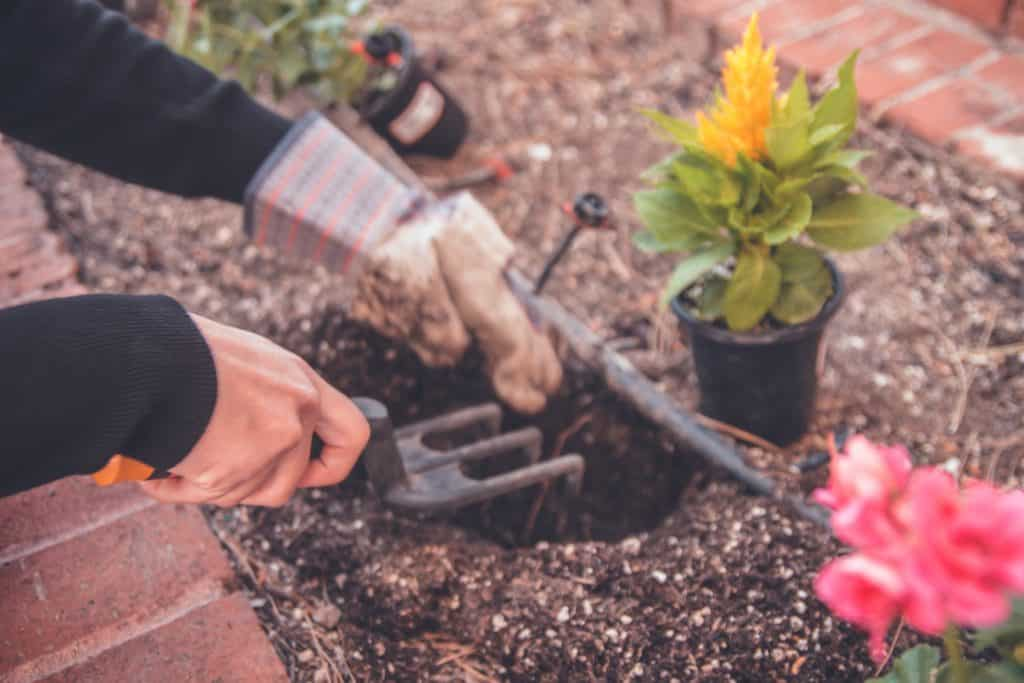 A Few Essential Garden Tools You Should Know