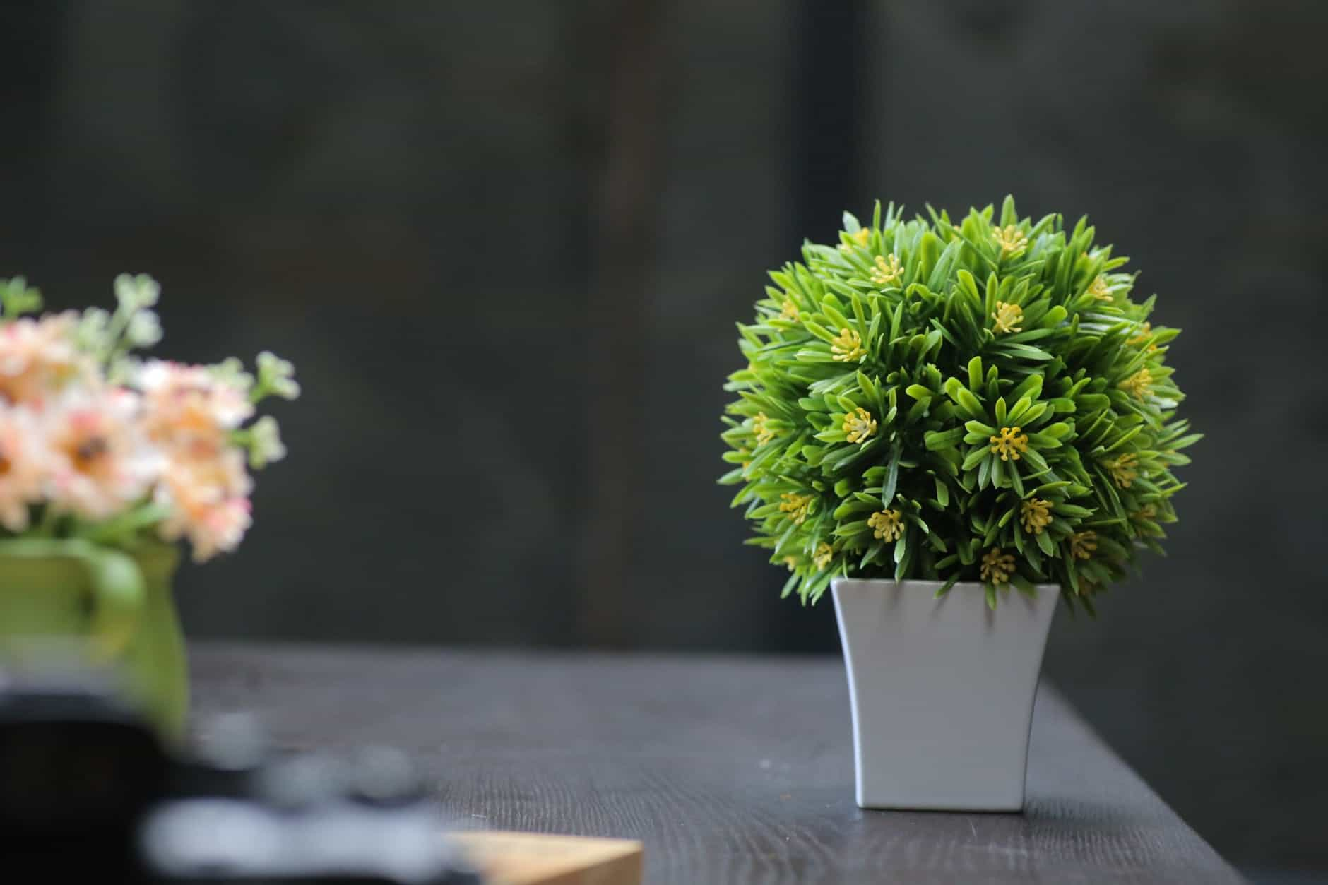 Artificial Plants And Similar Products For Your Gardening Interests