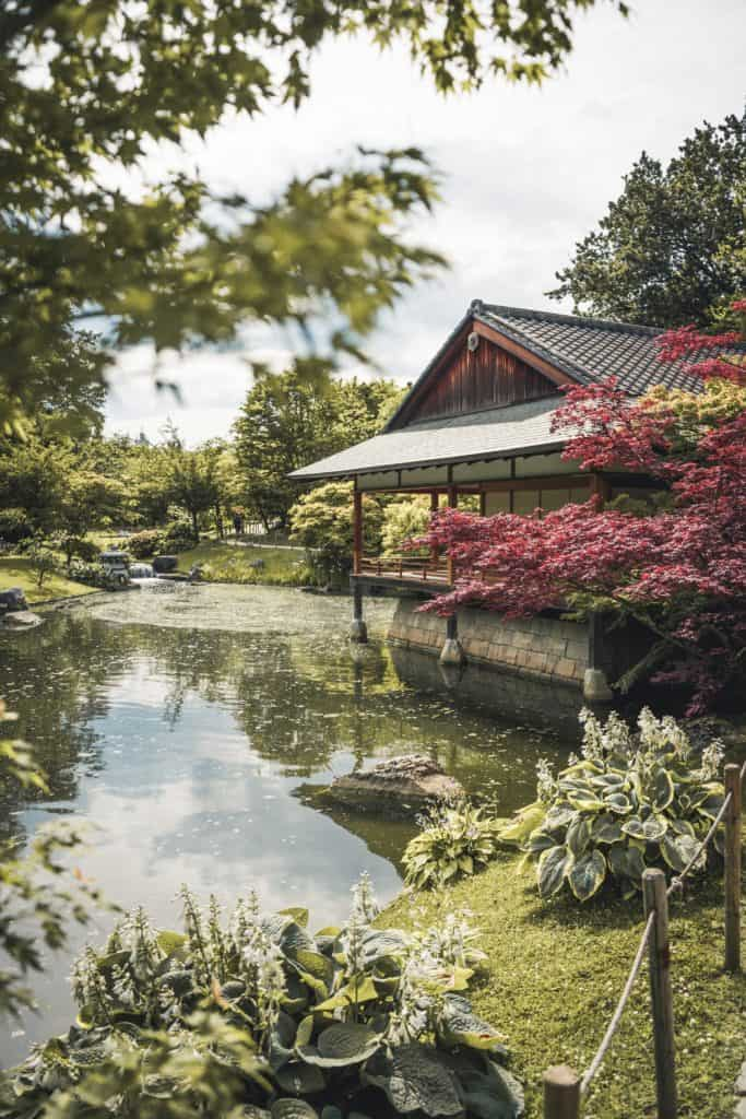 Have Your Own Japanese Garden