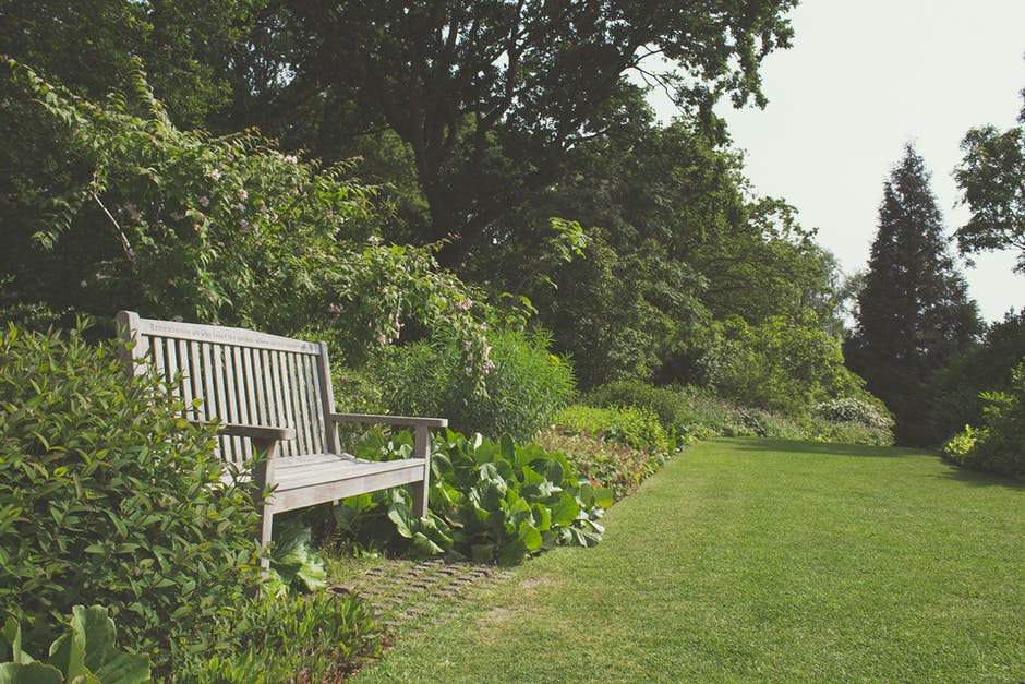 A wooden bench sitting on top of a lush green park